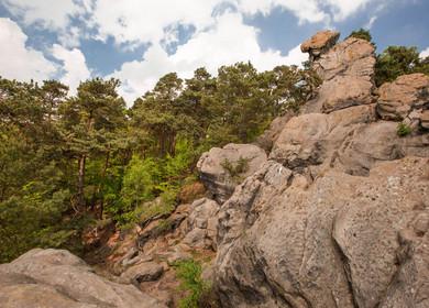 Die Teutoschleife Dörenther Klippen führt an dem Felsen Hockendes Weib vorbei.
