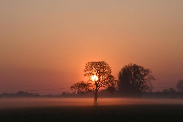Sonnenuntergang in der Düsterdieker Niederung