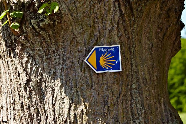 Das blaue Schild mit der Muschel zeigt, hier gehts weiter auf dem Jacobsweg.